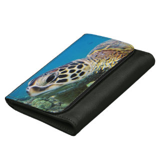 Hawaii Green Sea Turtle Wallets For Women