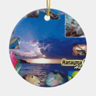 Hawaii Hanauma Bay Ceramic Ornament