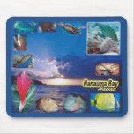 Hawaii Hanauma Bay Marine Life Mousepad