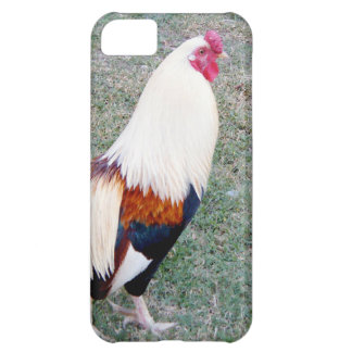 Hawaii Hanauma Bay Rooster Case For iPhone 5C