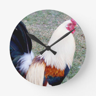 Hawaii Hanauma Bay Rooster Round Clock