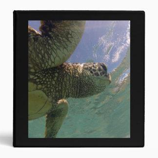 Hawaii Hanauma Bay Turtle Note Binder