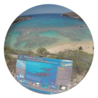 Hawaii Hanauma Bay Volcano Party Plates