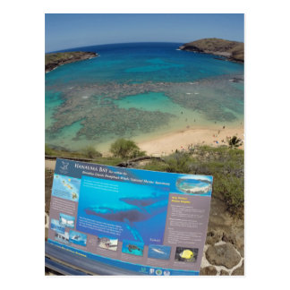 Hawaii Hanauma Bay Volcano Post Card