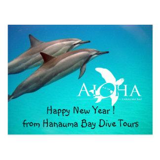 Hawaii Happy New Year Postcard