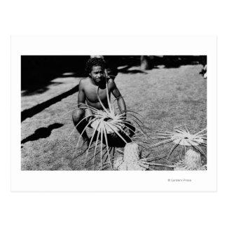 Hawaii - hombre que hace la fotografía de los postales