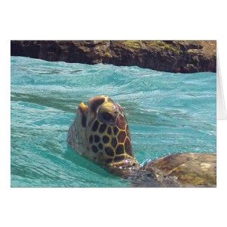 Hawaii Honu Turtle Card