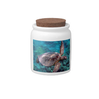 Hawaii Honu Turtle Cookie Jar Candy Dish