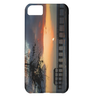 Hawaii iPhone 5 Cover For iPhone 5C