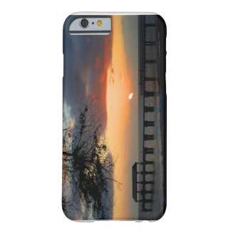 Hawaii iPhone 6 case