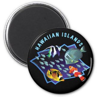 Hawaii Is. Reefers Fridge Magnets