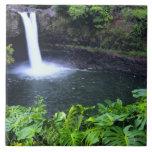 Hawaii, isla grande, Hilo, caídas del arco iris, b Azulejo Cuadrado Grande