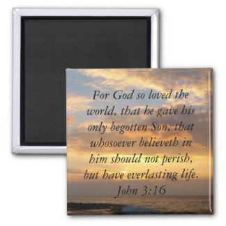 Hawaii John 3:16 Magnet