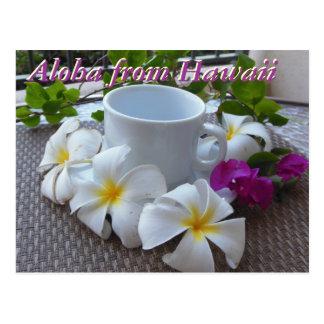 Hawaii Kona coffee and plumerias Postcard