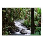 Hawaii la isla grande felicitacion
