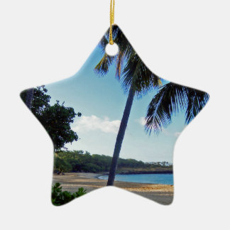 Hawaii Lanai Island Christmas Ceramic Ornament