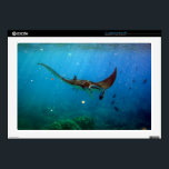 "Hawaii Manta Ray Decal For Laptop<br><div class=""desc"">There are many Manta Rays in Hawaii.</div>"