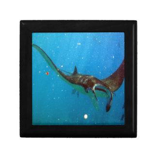 Hawaii Manta Ray Gift Box