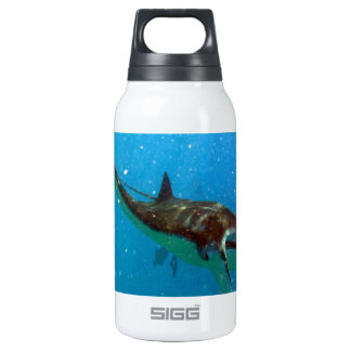 Hawaii Manta Ray Insulated Water Bottle