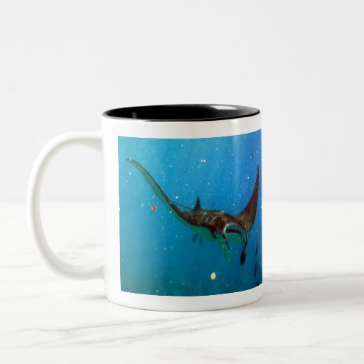Hawaii Manta Ray Coffee Mug