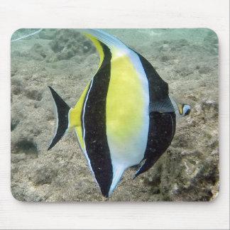 Hawaii Moorish Idol Fish Mouse Pad