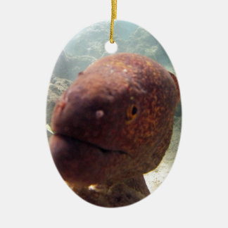 Hawaii Moray Eel Ceramic Ornament