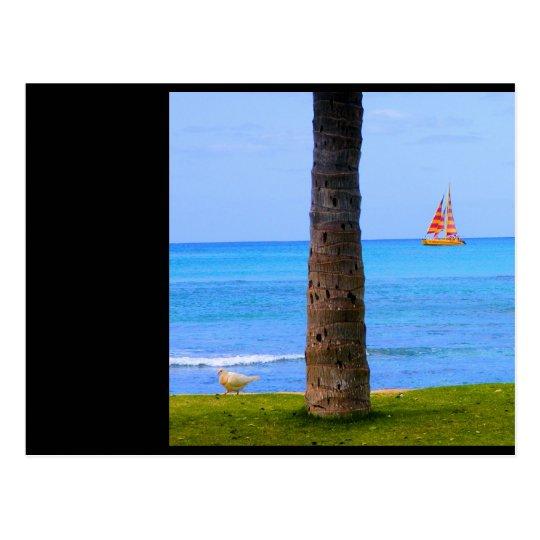 Hawaii Nature Postcard