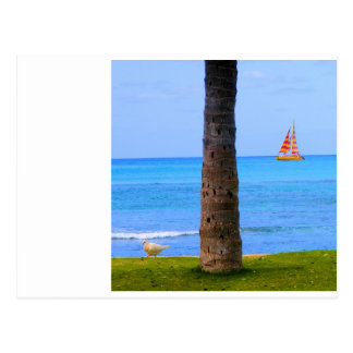 Hawaii Nature Postcard