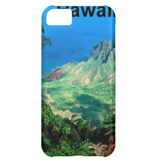 Hawaii (new) (St.K) iPhone 5C Cases