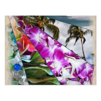 Hawai'i No Ka Oi Postcard