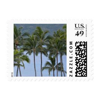 Hawaii Palm Trees Postage