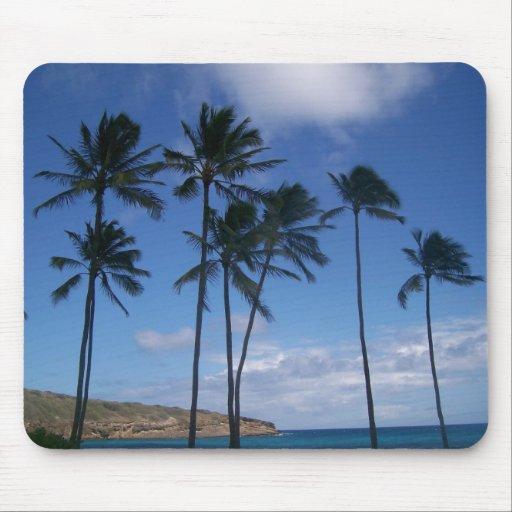 Hawaii Palms Mousepads