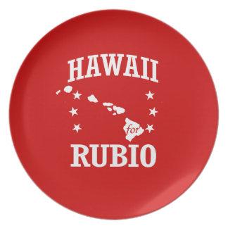 HAWAII PARA RUBIO PLATO PARA FIESTA
