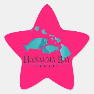 Hawaii Parrot Fish and Hawaii Islands Star Sticker