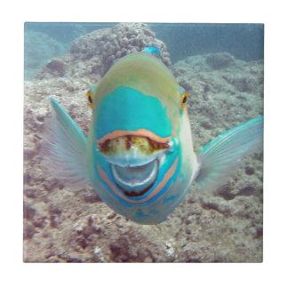 Hawaii Parrot Fish Ceramic Tile