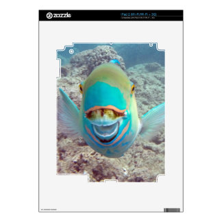 Hawaii Parrot Fish Decal For The iPad 2