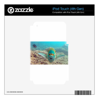 Hawaii Parrot Fish - Uhu Decals For iPod Touch 4G