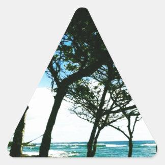 Hawaii Calcomanía De Triangulo Personalizadas