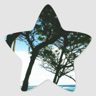 Hawaii Pegatina En Forma De Estrella