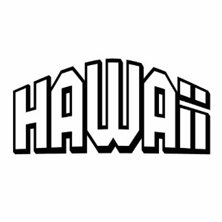 Hawaii Photo Sculpture