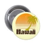 Hawaii Pin