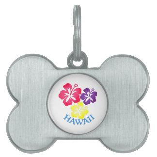 Hawaii Placa Mascota