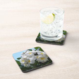 Hawaii Plumeria Drink Coaster