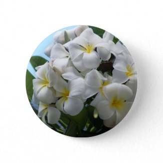 Hawaii Plumeria Flower button