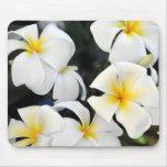 Hawaii Plumeria Flower Mousepad