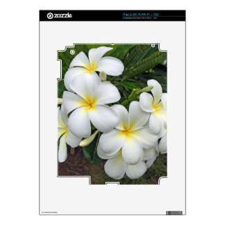 Hawaii Plumeria Flowers Decals For The iPad 2