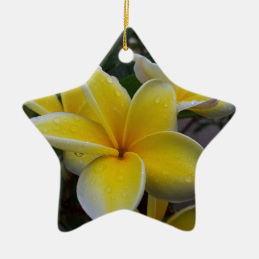 Hawaii Plumeria Flowers Double-Sided Star Ceramic Christmas Ornament