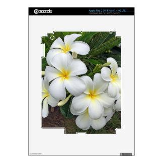 Hawaii Plumeria Flowers iPad 3 Decals