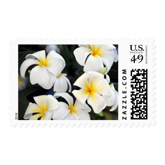 Hawaii Plumeria Flowers Postage