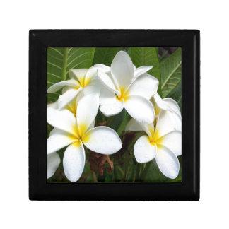 Hawaii Plumeria Flowers Trinket Boxes